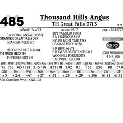 Lot 485 - TH Great Falls 0713 - Thousand Hills Angus