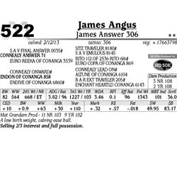 Lot 522 - James Answer 306 - James Angus