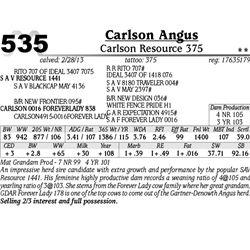Lot 535 - Carlson Resource 375 - Carlson Angus