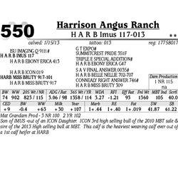 Lot 550 - H A R B Imus 117-013 - Harrison Angus Ranch
