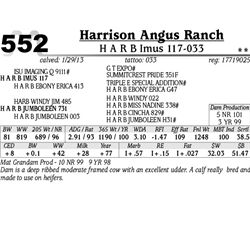 Lot 552 - H A R B Imus 117-033 - Harrison Angus Ranch