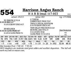 Lot 554 - H A R B Imus 117-053 - Harrison Angus Ranch