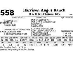 Lot 558 - H A R B S Chisum 183 - Harrison Angus Ranch