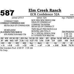 Lot 587 - ECR Confidence 32A - Elm Creek Ranch
