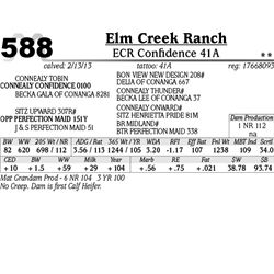Lot 588 - ECR Confidence 41A - Elm Creek Ranch