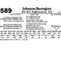 Lot 589 - JAF BCC RightAnswer 32A - Johnson/Barragree