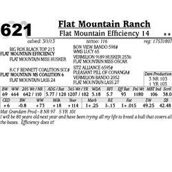 Lot 621 - Flat Mountain Efficiency 14 - Flat Mountain Ranch