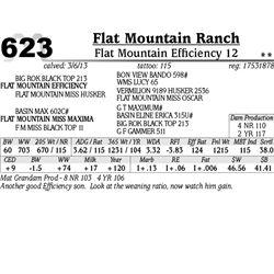 Lot 623 - Flat Mountain Efficiency 12 - Flat Mountain Ranch