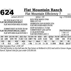 Lot 624 - Flat Mountain Efficiency 7 - Flat Mountain Ranch