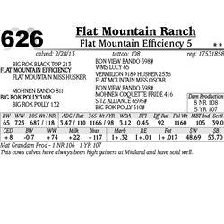Lot 626 - Flat Mountain Efficiency 5 - Flat Mountain Ranch