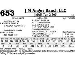 Lot 653 - JMAR Ten X365 - J M Angus Ranch LLC