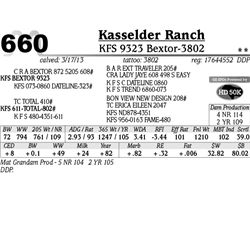 Lot 660 - KFS 9323 Bextor-3802 - Kasselder Ranch