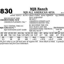 Lot 830 - MJB ALL AMERICAN 403A - MJB Ranch