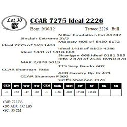Lot 30 - CCAR 7275 Ideal 2226