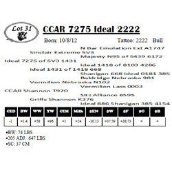 Lot 31 - CCAR 7275 Ideal 2222