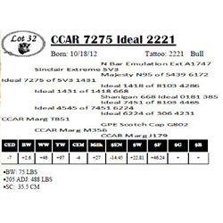 Lot 32 - CCAR 7275 Ideal 2221