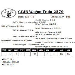 Lot 36 - CCAR Wagon Train 2279
