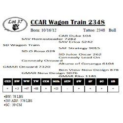 Lot 37 - CCAR Wagon Train 2348