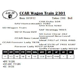 Lot 38 - CCAR Wagon Train 2301