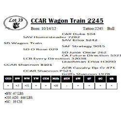 Lot 39 - CCAR Wagon Train 2245