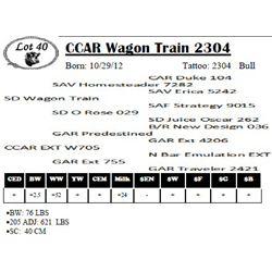 Lot 40 - CCAR Wagon Train 2304