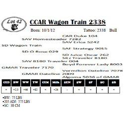 Lot 42 - CCAR Wagon Train 2338