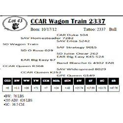 Lot 43 - CCAR Wagon Train 2337