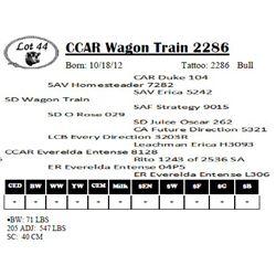 Lot 44 - CCAR Wagon Train 2286