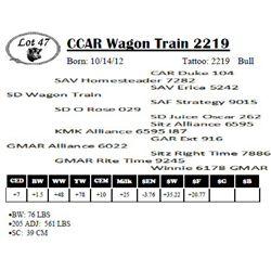 Lot 47 - CCAR Wagon Train 2219