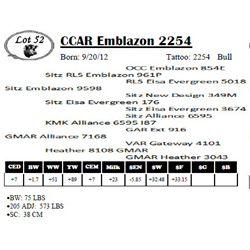 Lot 52 - CCAR Emblazon 2254
