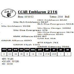 Lot 55 - CCAR Emblazon 2316
