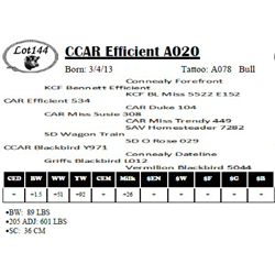 Lot 144 - CCAR Efficient A020