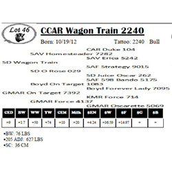 Lot 46 - CCAR Wagon Train 2240