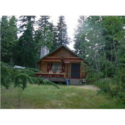 1 WEEK STAY IN A MOUNTAIN CABIN IN THE BIGHORN MOUNTAINS OF WYOMING