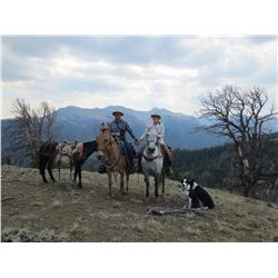 7-NIGHT ALL INCLUSIVE VACATION ON THE 7D RANCH IN WYOMING WILDERNESS FOR 2 PEOPLE