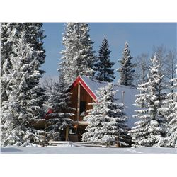 3-DAY BEAUTIFUL WINTER CABIN STAY IN THE ALBERTA ROCKIES SPOTTING FOR THE MAGNIFICENT BIGHORN SHEEP.