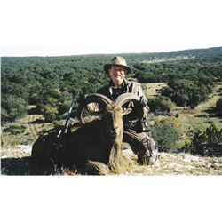 5-DAY AOUDAD HUNT IN TEXAS FOR 1 HUNTER