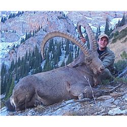TROPHY MID-ASIAN IBEX HUNT FOR 1 HUNTER IN KYRGYZSTAN