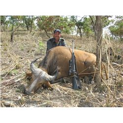 7- DAY WESTERN BUFFALO HUNT IN CAMEROON FOR 1 HUNTER