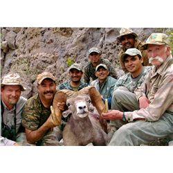DESERT BIGHORN SHEEP PERMIT & HUNT EL VIZCAINO BIOSPHERE RESERVE, BAJA CALIFORNIA SUR, MEXICO