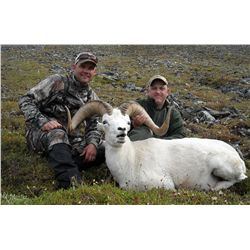 10-DAY DALL'S SHEEP HUNT FOR 1 HUNTER