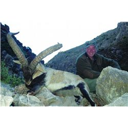 4-DAY TROPHY SOUTHEASTERN IBEX HUNT IN SPAIN FOR 1 HUNTER