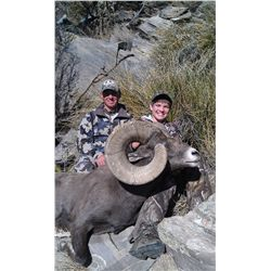 NEW MEXICO ROCKY MOUNTAIN BIGHORN SHEEP PERMIT New Mexico Department of Game & Fish Wildlife Managem