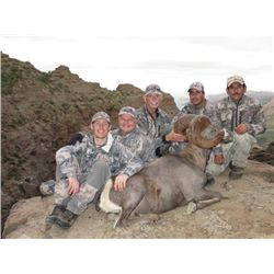 10-DAY BAJA, CALIFORNIA SUR, MEXICO, DESERT BIGHORN SHEEP WITH TY MILLER'S EL FUERTE OUTFITTERS