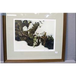 "Framed limited edition Robert Bateman print ""Winter Wren 87/950, signed in pencil by artist"