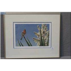 """Limited edition framed Robert Bateman print """" House Finch and Yucca"""" 575/950 signed in pencil by art"""