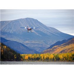 Caribou Hunt with Golden Bear Outfitters