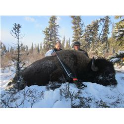 Bison Hunt with Besa River Outfitters