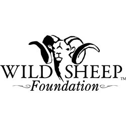 Life Membership in the Wild Sheep Foundation, Donated by the Wild Sheep Foundation