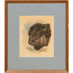 Ernest Thompson, watercolor